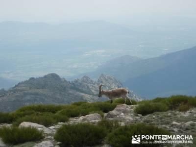 Ruta Cuerda Larga - Embalse Santillana desde Bailanderos; rutas madrid; rutas sierra de madrid